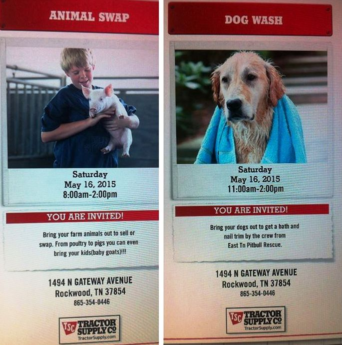 Come on out to the Rockwood Tractor Supply's Animal Swap where ETPBR will be holding a dog wash. The Low Cost Vets will be there as well!